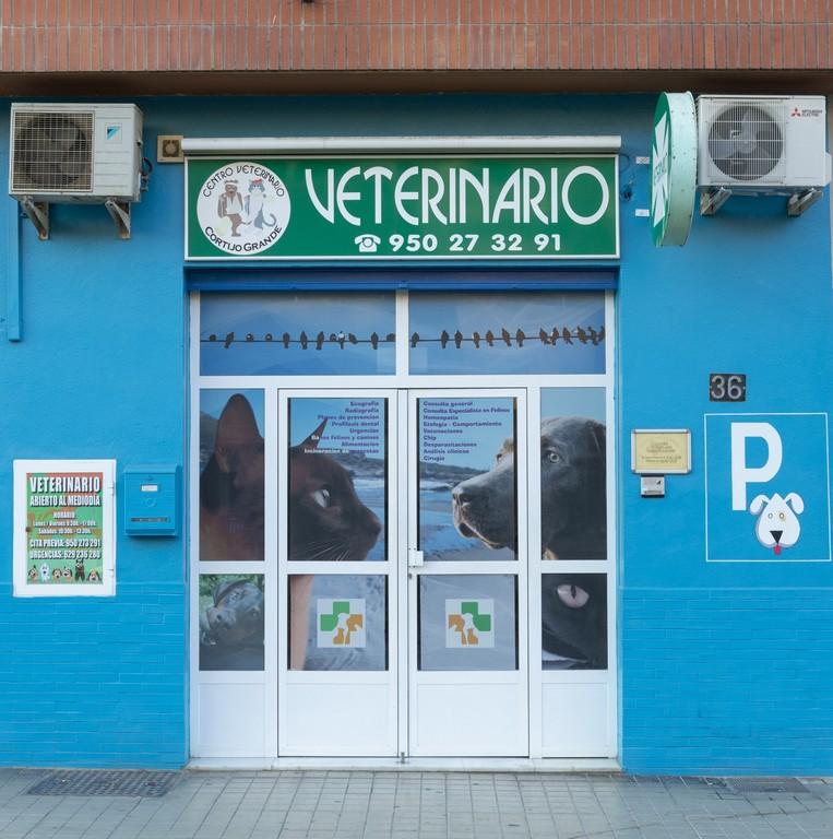 clinica_veterinaria_cortijogrande1.jpg