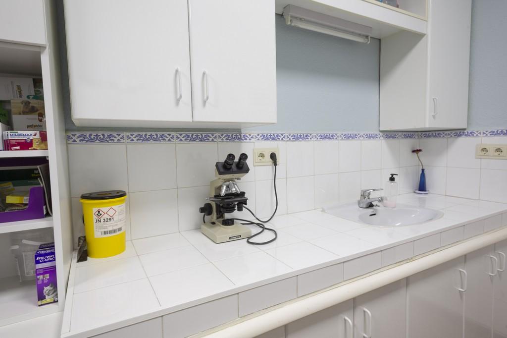 clinica_veterinaria_cortijogrande3.jpg