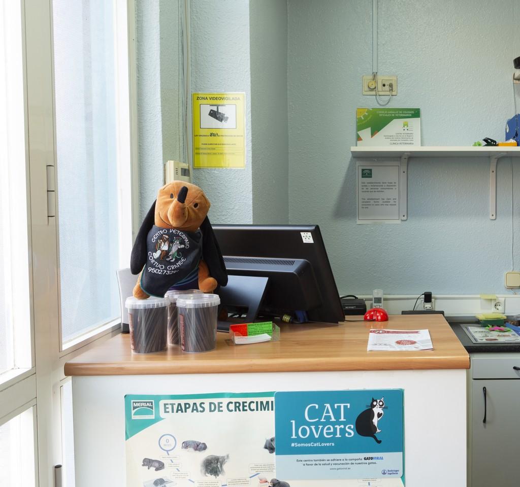 clinica_veterinaria_cortijogrande20.jpg